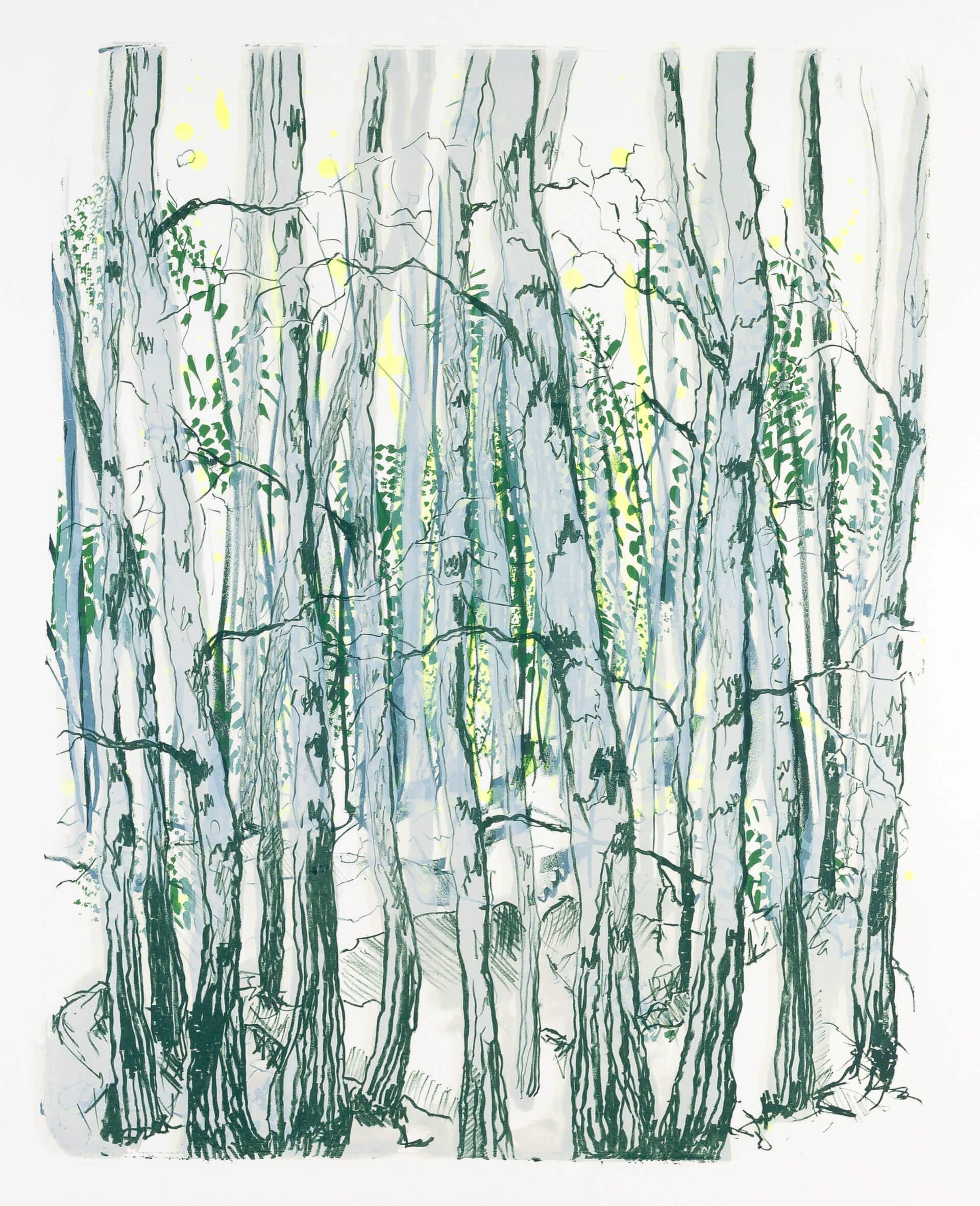 Katharina Albers, Wald X-III, 2015, Farblithographie, Unikat, 50×40 cm