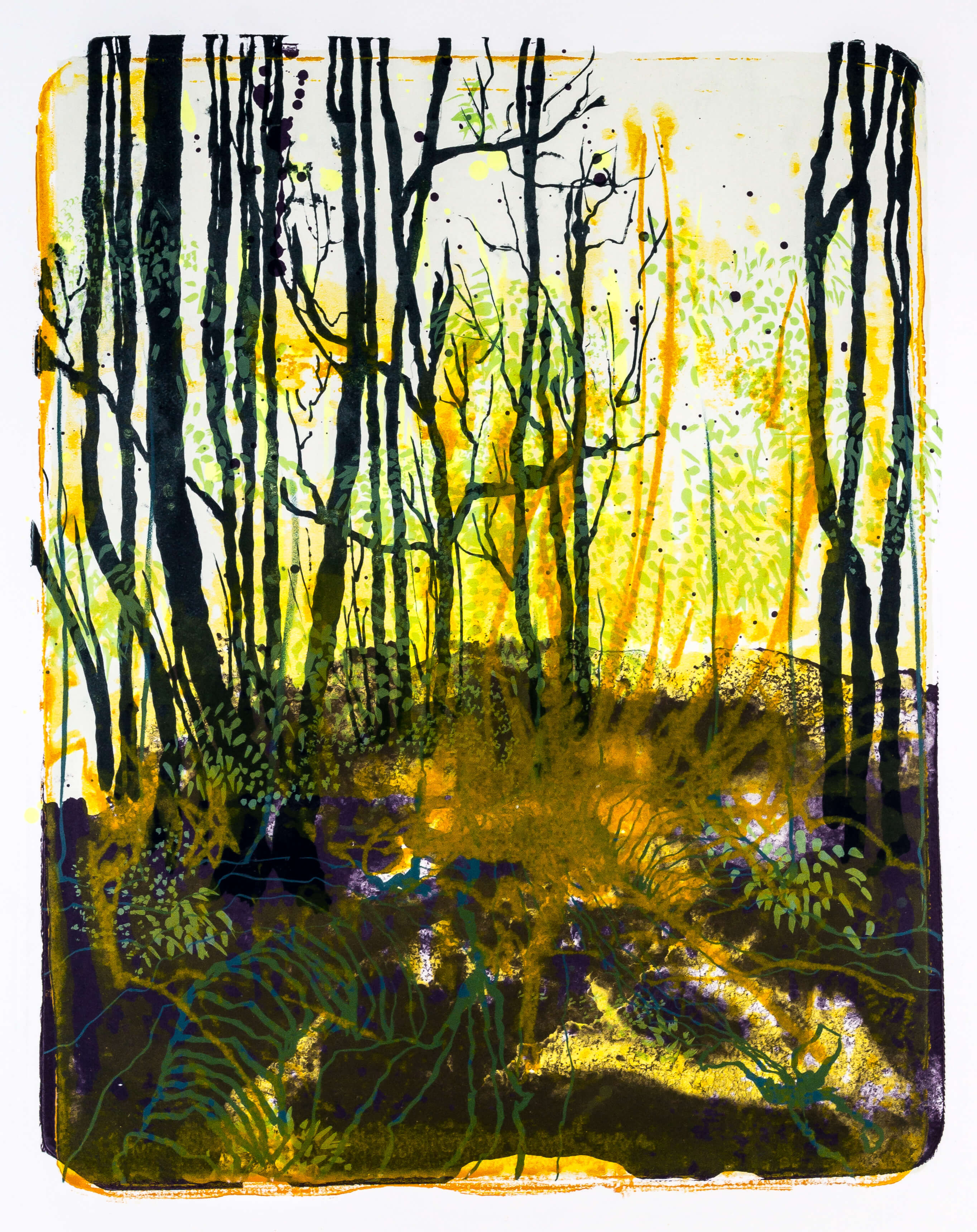 Katharina Albers, Wald X-X, 2015, Farblithographie, Unikat, 50×40 cm