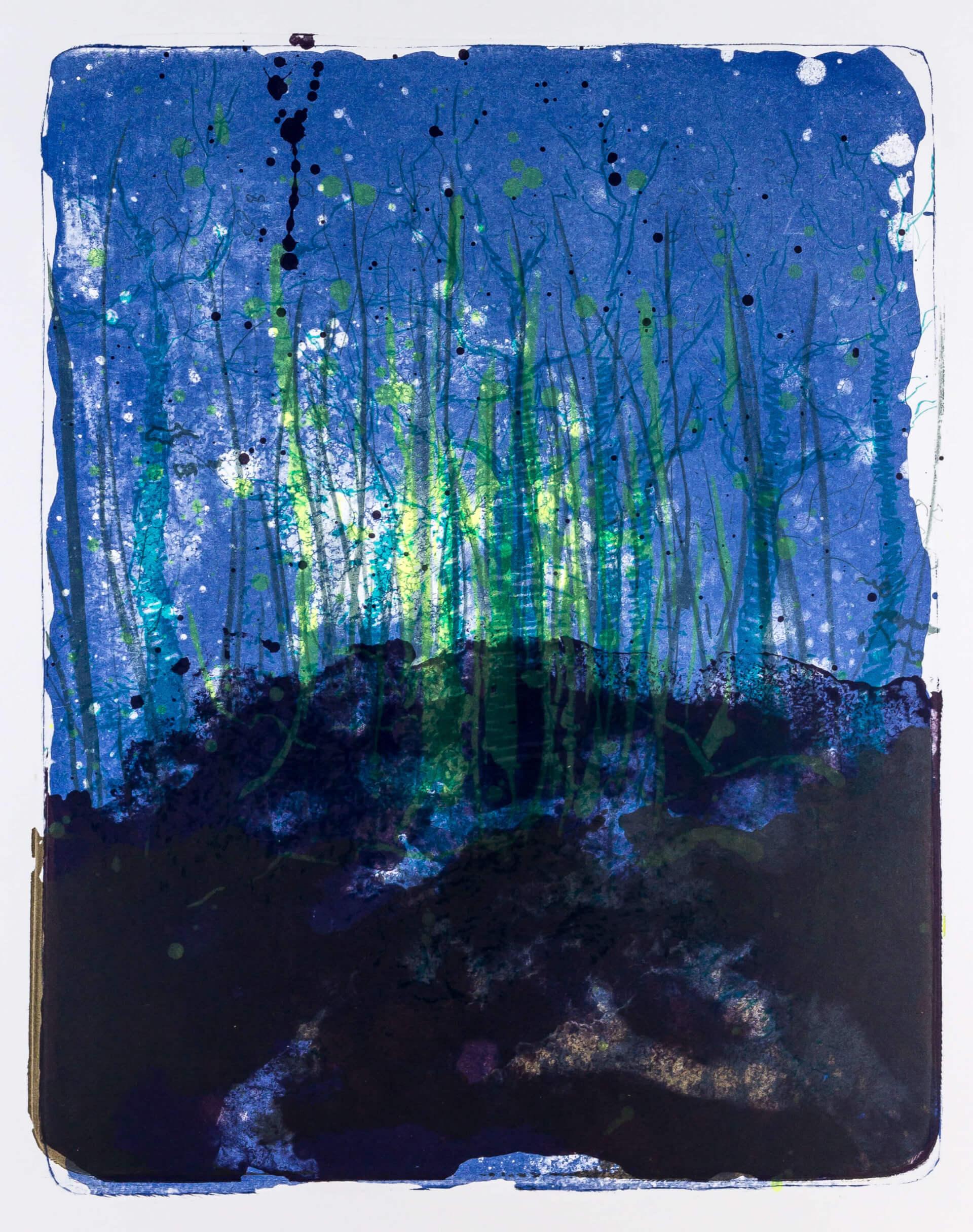 Katharina Albers, Wald X-XXX, 2015, Farblithographie, Unikat, 50×40 cm