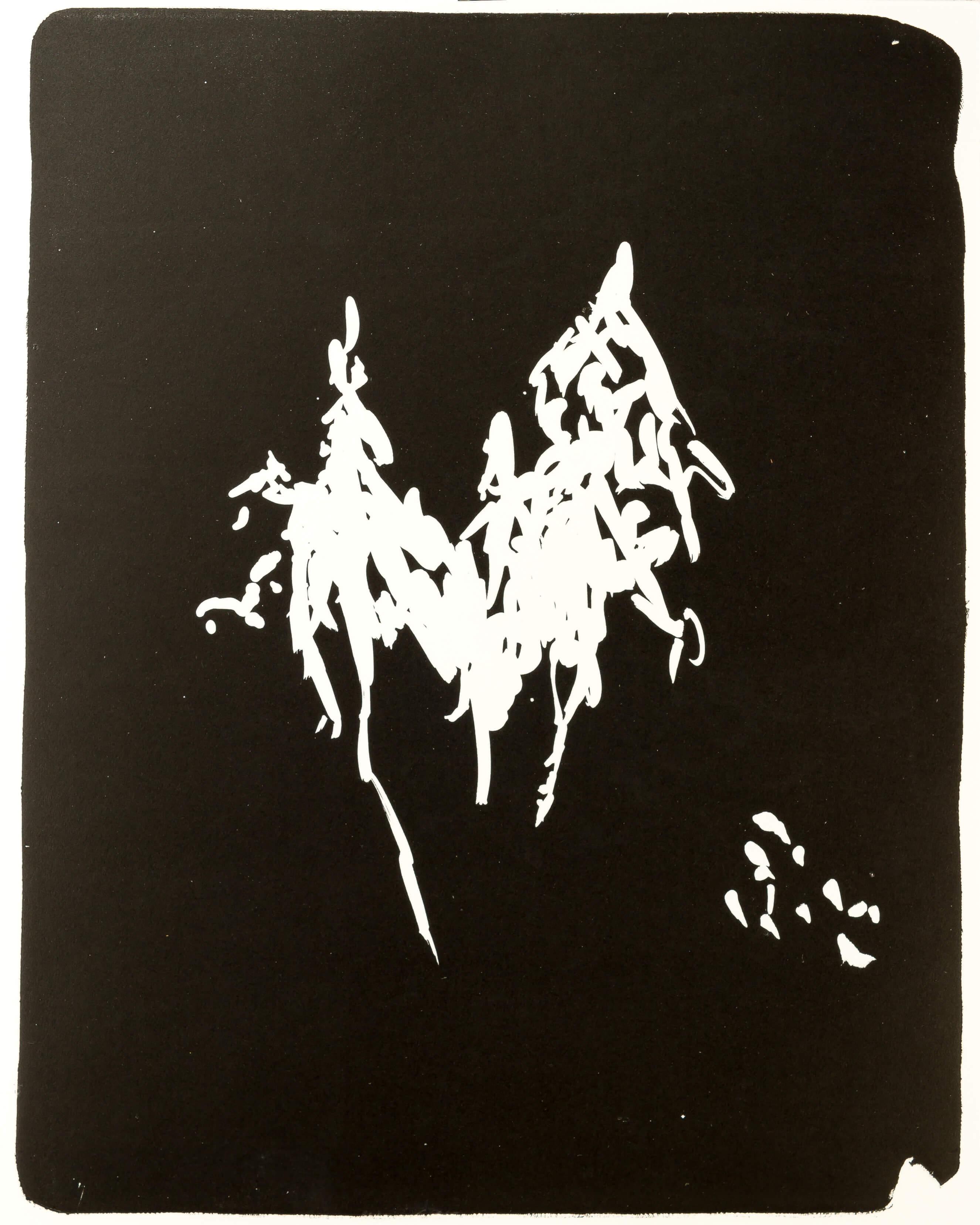 Katharina Albers, Wald X(N)-XV, 2015, Lithographie, Unikat, 50x40 cm