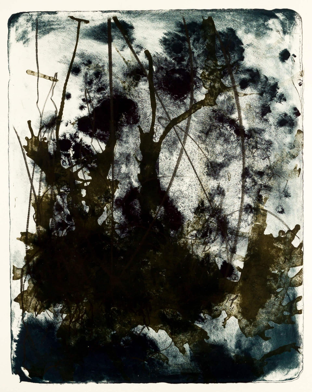 Katharina Albers, Wald X(N)-XVIII, 2016, Farblithographie, 50x40 cm, Unikat