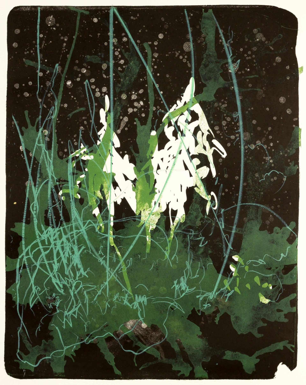 Katharina Albers, Wald X(N)-XX, 2016, Farblithographie, 50x40 cm, Unikat