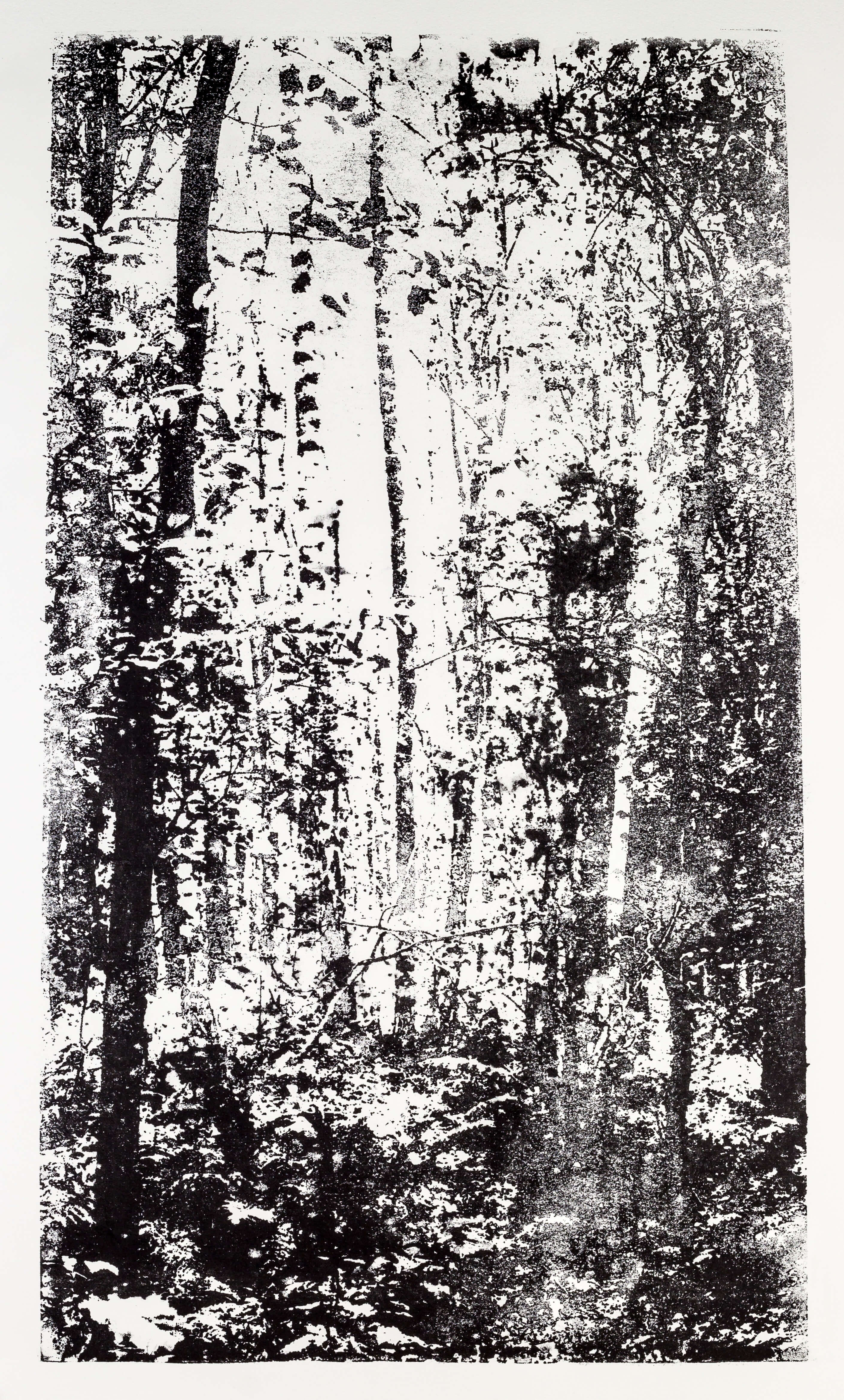 Katharina Albers, Wald XX-I, 2015, Lithographie, Unikat, 60×33 cm