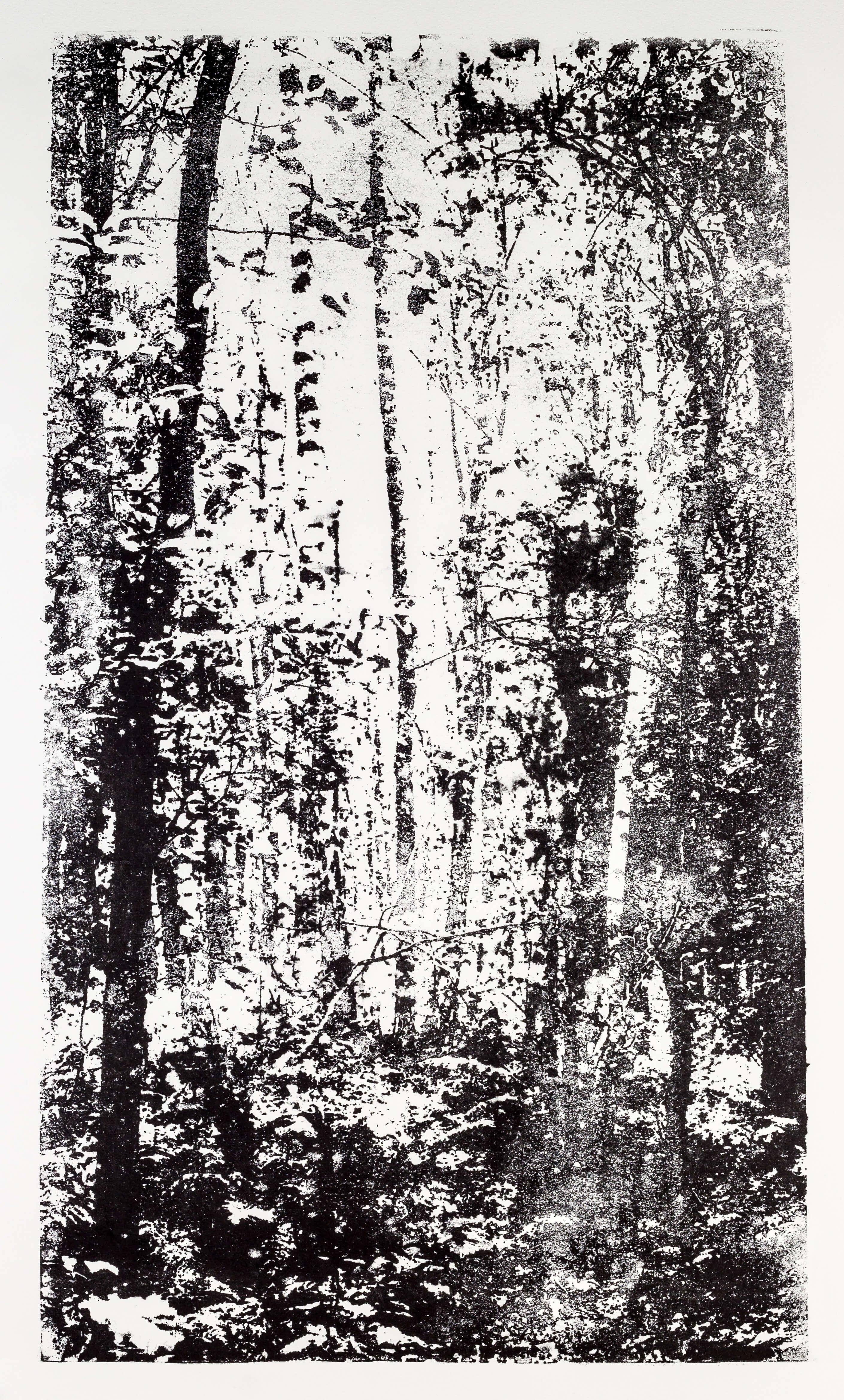 Katharina Albers, Wald XX-I, 2015, Lithographie, Unikat, 60×33 cm