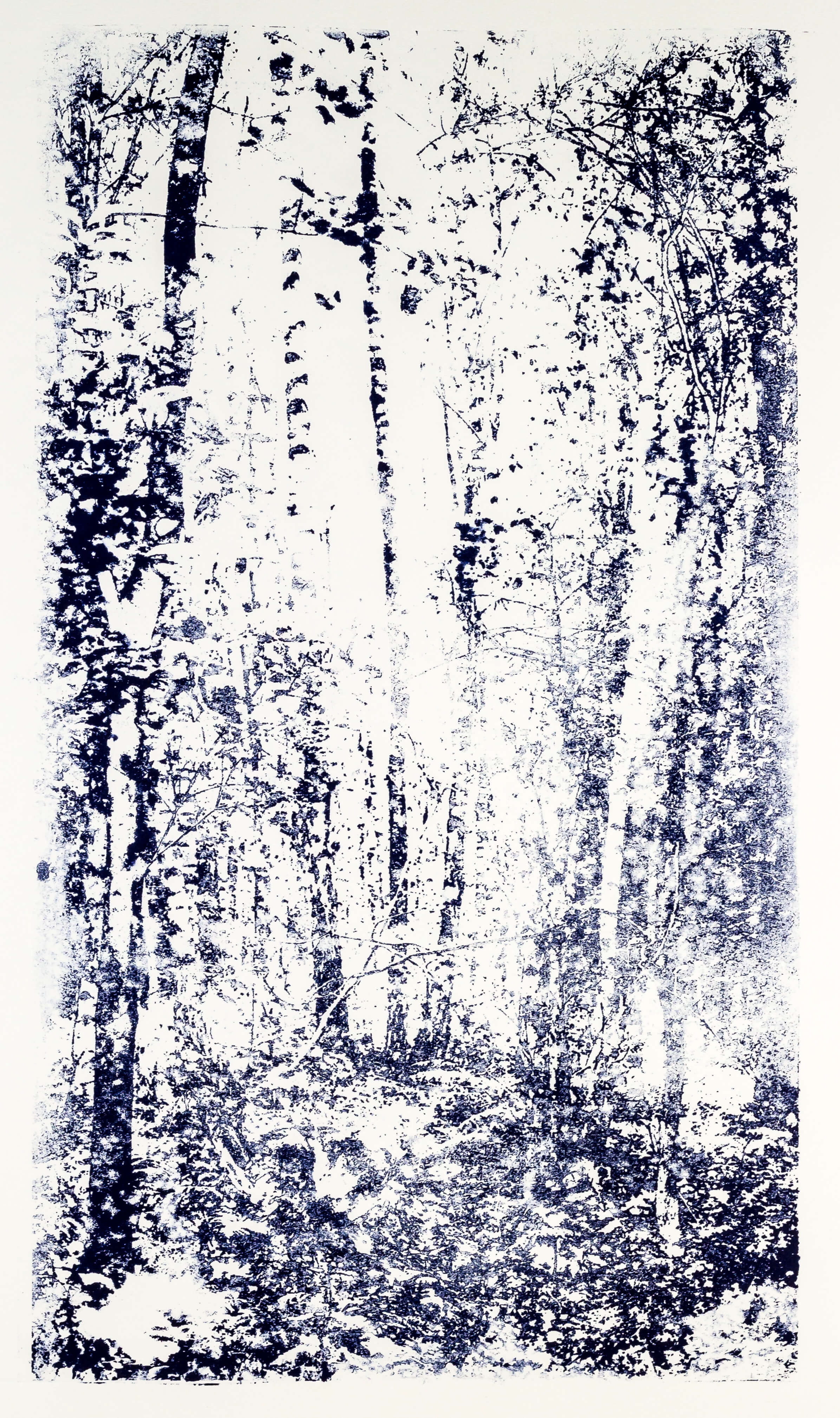 Katharina Albers, Wald XX.I-IV, 2015, Farblithographie, Unikat, 60×33 cm