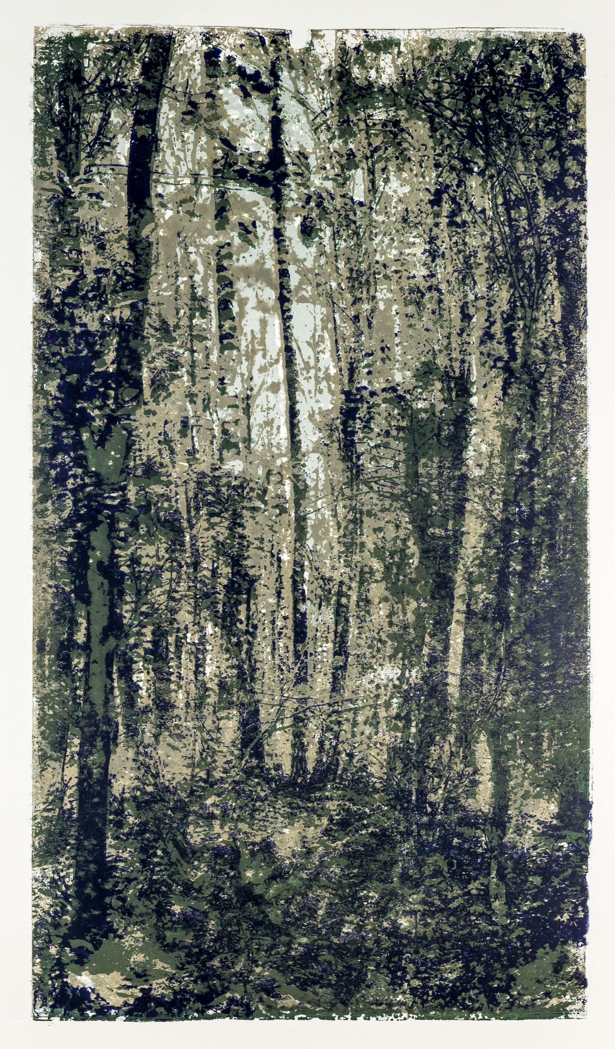 Katharina Albers, Wald XXXI, 2015, Farblithographie,1 von 2, 60×33 cm