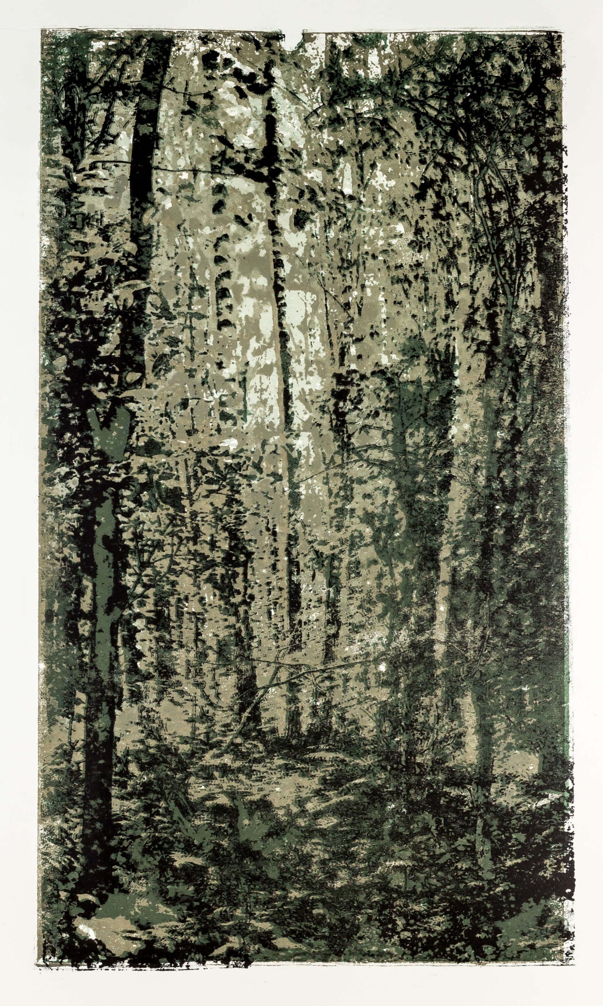 Katharina Albers, Wald XXXIII, 2015, Farblithographie,1 von 2, 60×33 cm