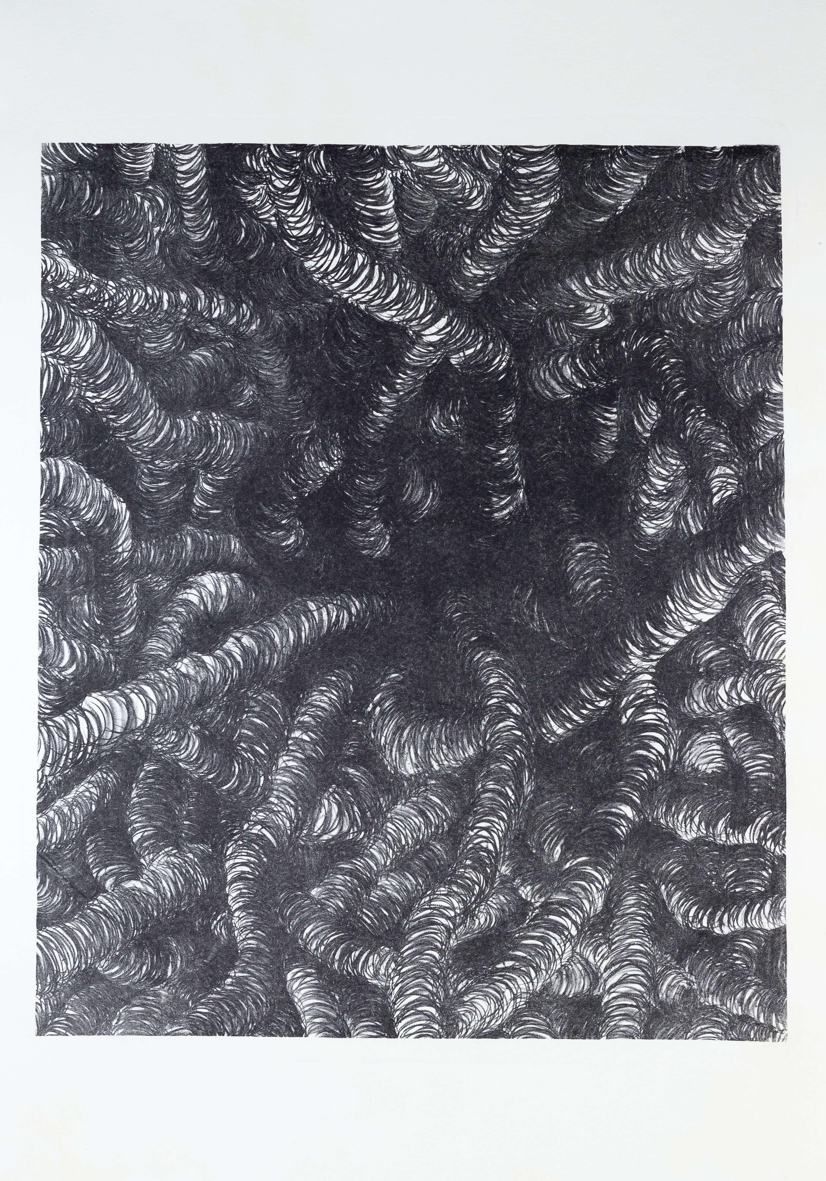 Katharina Albers, Transformation X, 2011, Lithographie, 5 Auflagen, 59,5x48,5cm