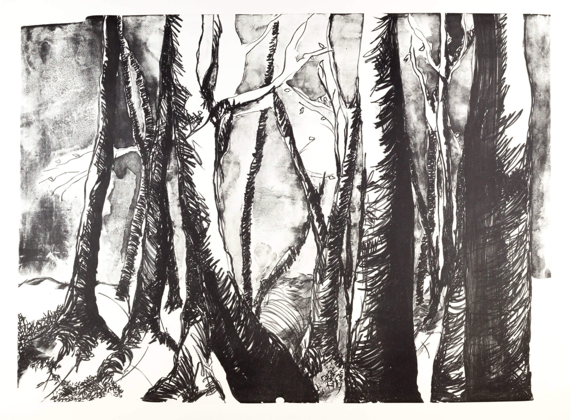 Katharina Albers, Wald (D), 2015, Lithographie (8 Steine), Unikat, 70×100 cm