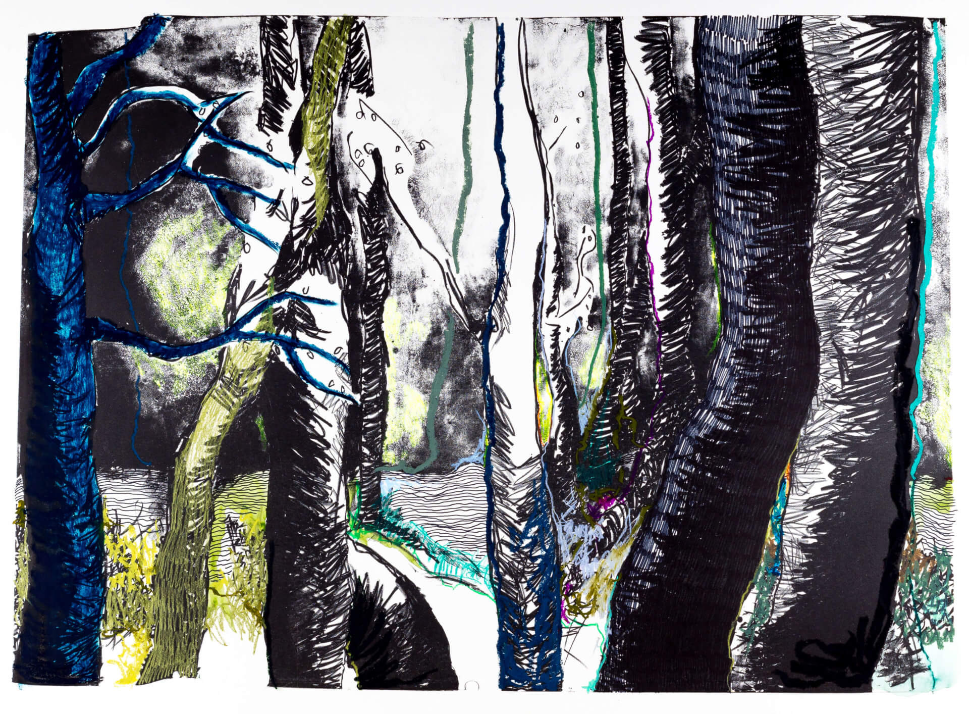 Katharina Albers, Wald (F_A)(C), 2015, Lithographie handkoloriert (Ölkreide, Graphit, Aquarellfarbe, Fineliner), Unikat, 70×100 cm