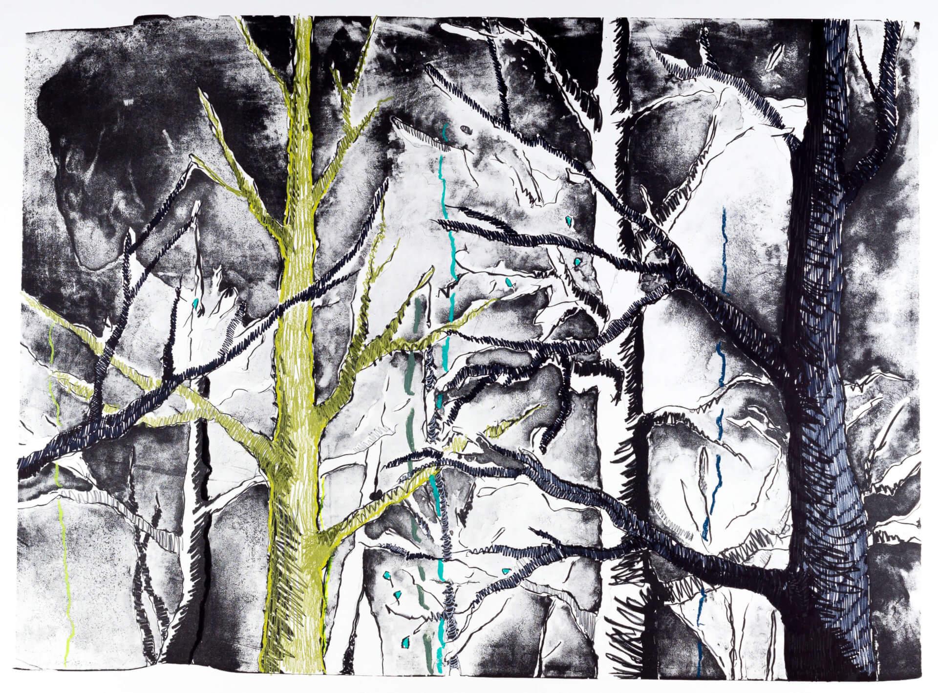 Katharina Albers, Wald (F_A)(F), 2015, Lithographie handkoloriert (Ölkreide, Graphit, Aquarellfarbe, Fineliner), Unikat, 70×100 cm