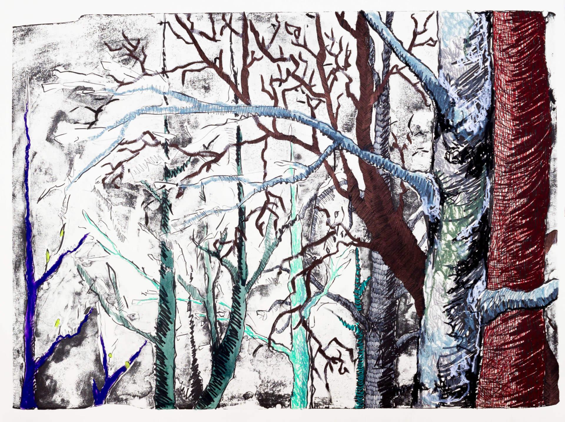 Katharina Albers, Wald (F_B)(E), 2016, Lithographie handkoloriert (Ölkreide, Graphit, Aquarellfarbe, Fineliner, Gelstift, Tusche), Unikat, 70×100 cm
