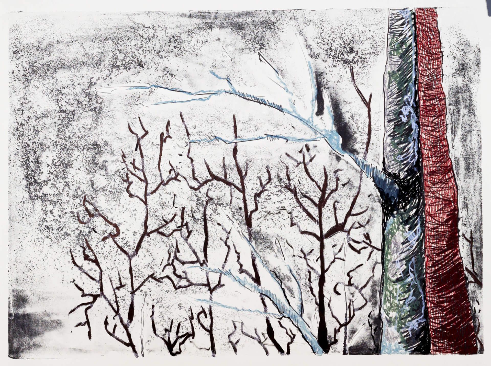 Katharina Albers, Wald (F_B)(G), 2016, Lithographie handkoloriert (Ölkreide, Graphit, Aquarellfarbe, Fineliner, Gelstift, Tusche), Unikat, 70×100 cm