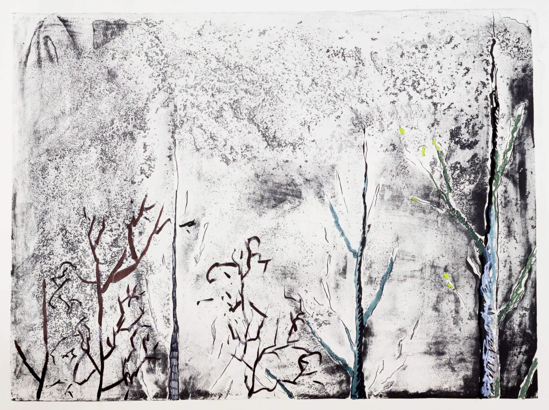 Katharina Albers, Wald (F_B)(H), 2016, Lithographie handkoloriert (Ölkreide, Graphit, Aquarellfarbe, Fineliner, Gelstift, Tusche), Unikat, 70×100 cm