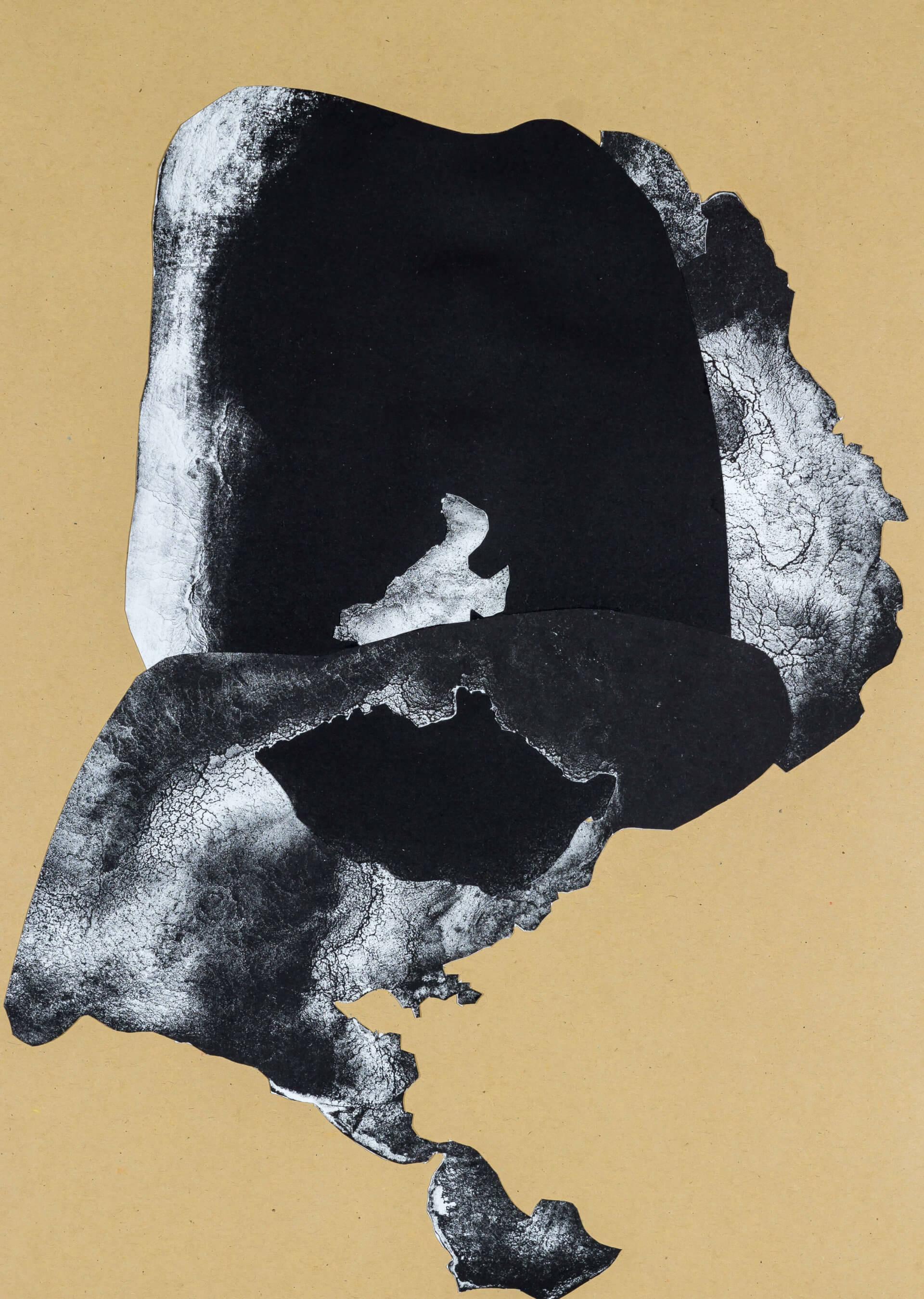 organism (cr) II, 2018, Lithographiecollage auf Papier, Unikat, 41,5x30cm