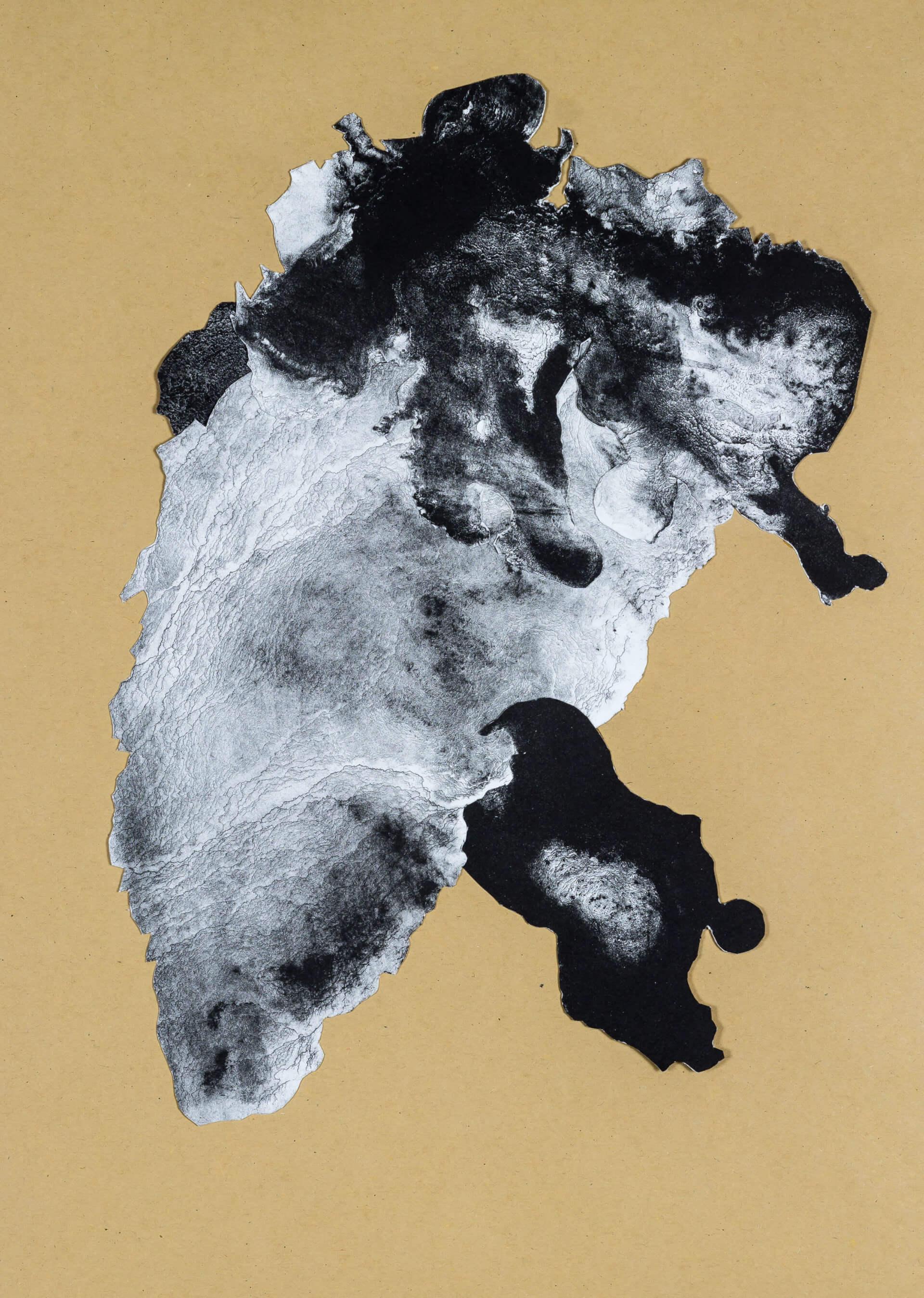organism (cr) III, 2018, Lithographiecollage auf Papier, Unikat, 41,5x30cm