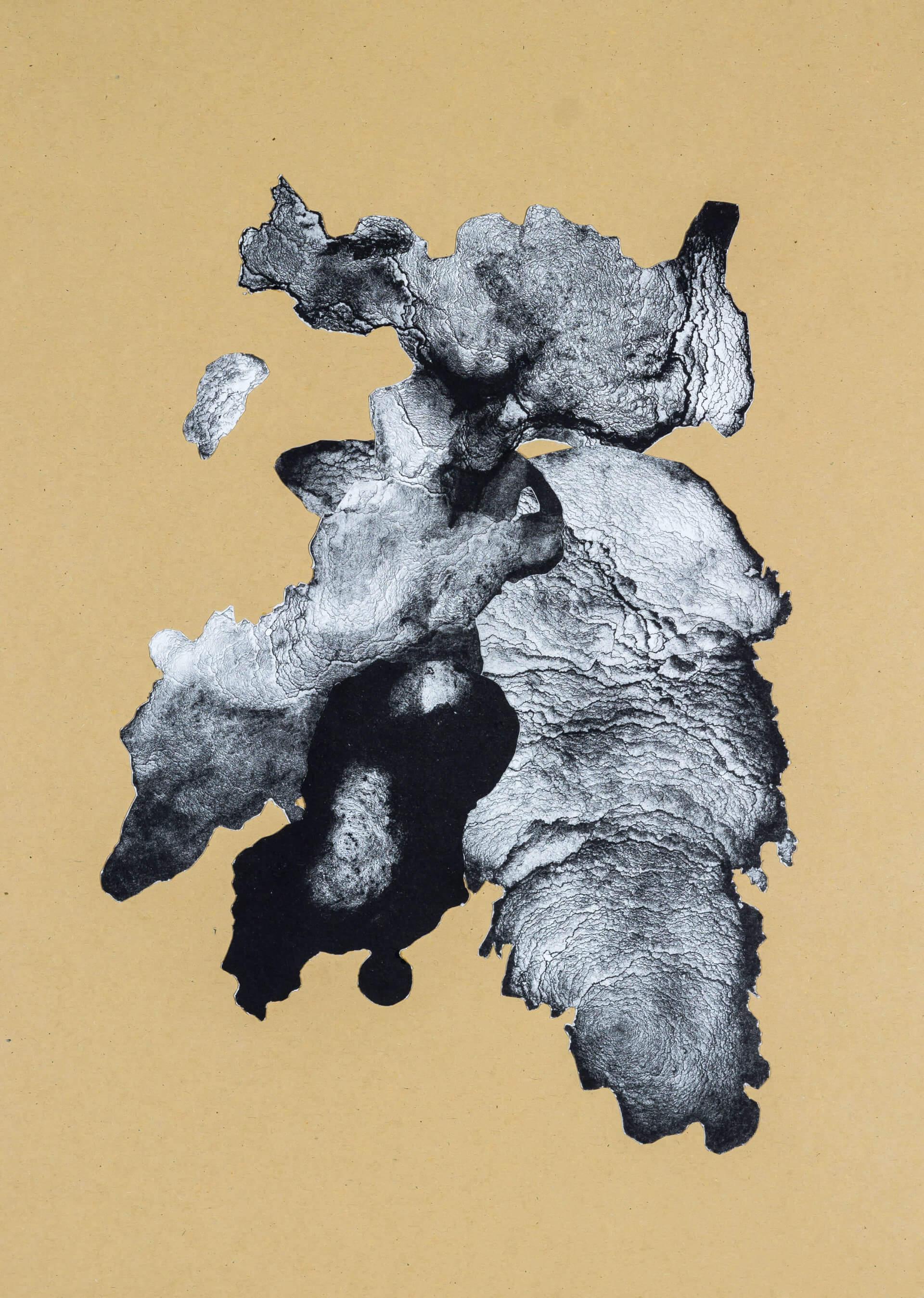 organism (cr) IV, 2018, Lithographiecollage auf Papier, Unikat, 41,5x30cm