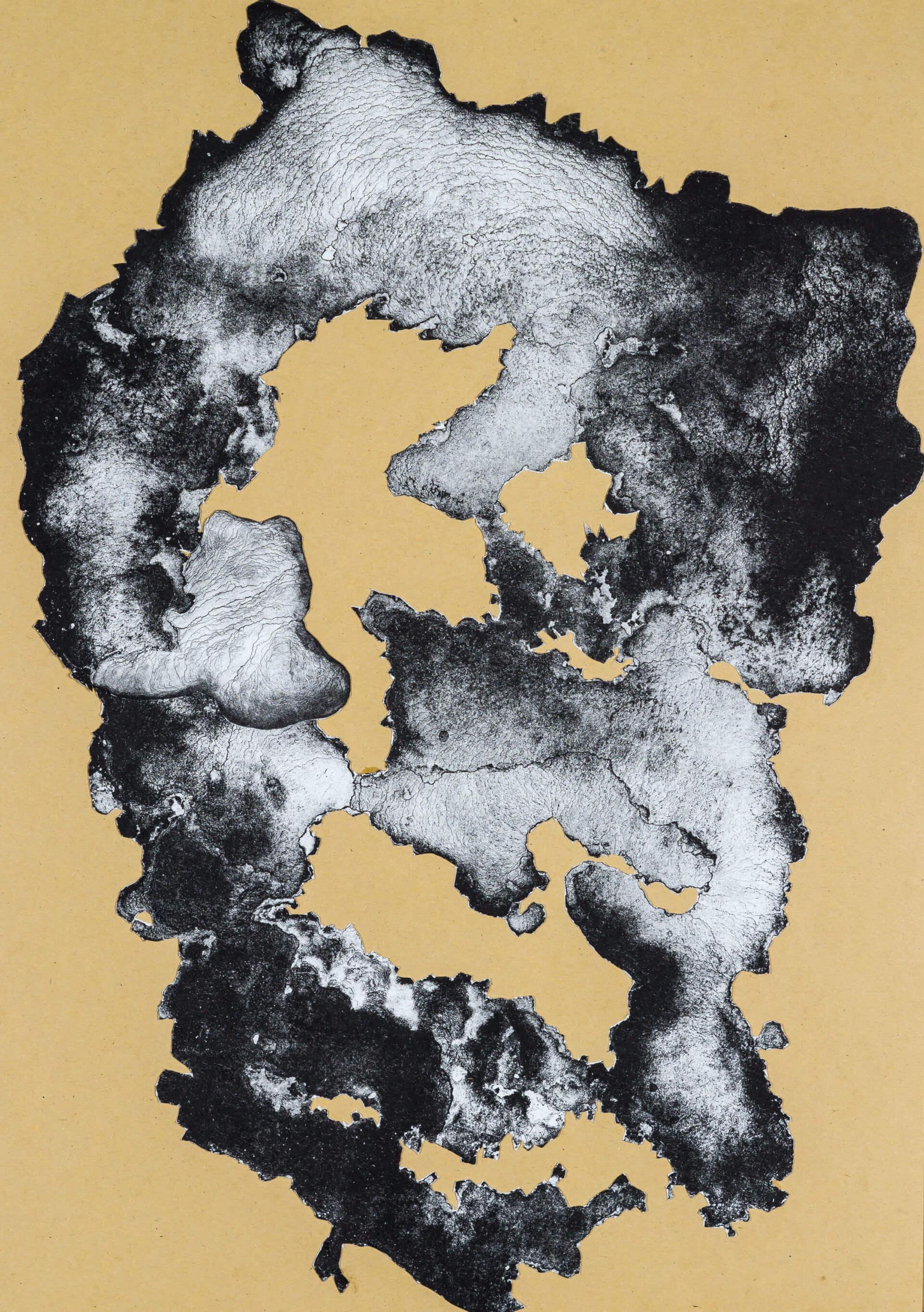 organism (cr) IX, 2018, Lithographiecollage auf Papier, Unikat, 41,5x30cm