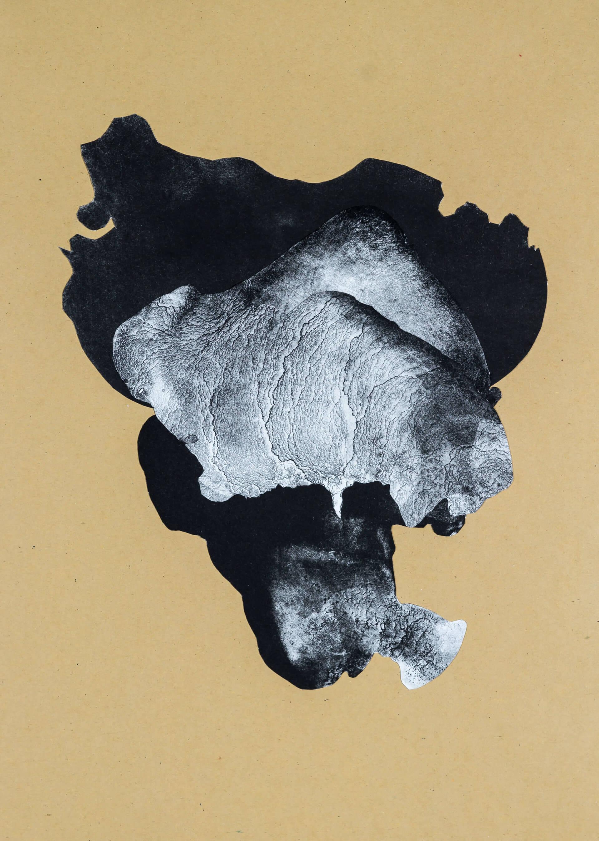 organism (cr) V, 2018, Lithographiecollage auf Papier, Unikat, 41,5x30cm