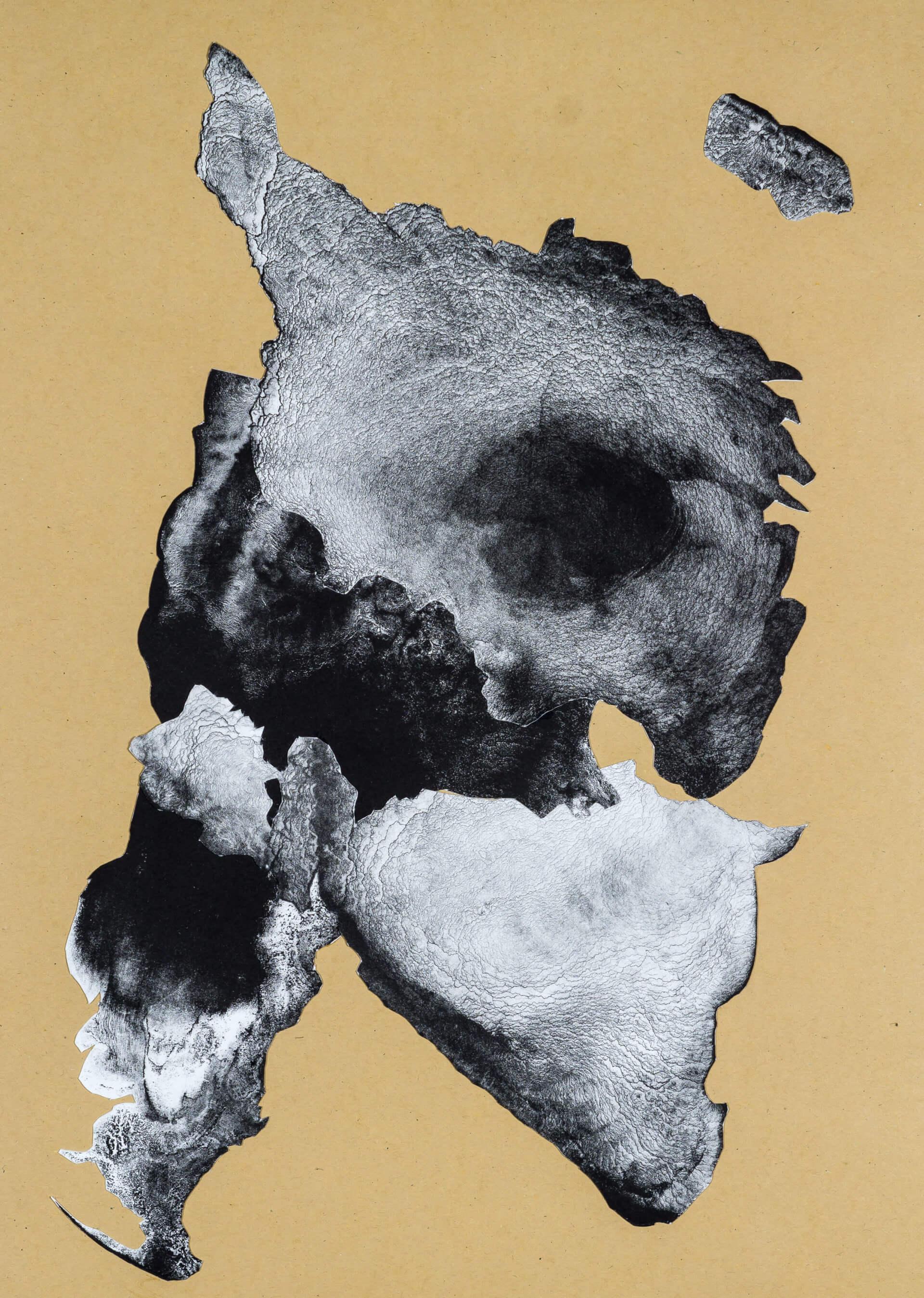 organism (cr) VII, 2018, Lithographiecollage auf Papier, Unikat, 41,5x30cm