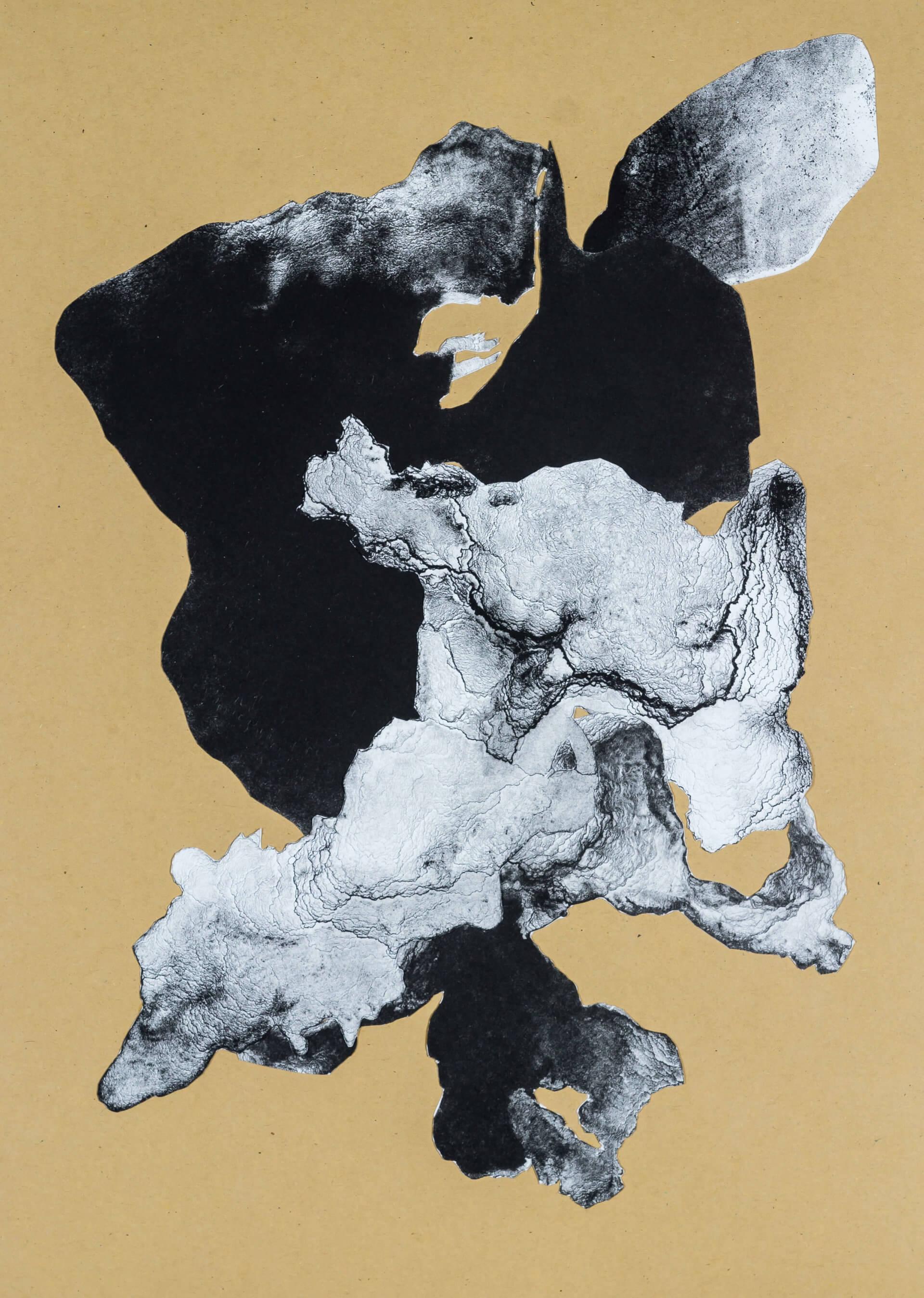 organism (cr) VIII, 2018, Lithographiecollage auf Papier, Unikat, 41,5x30cm