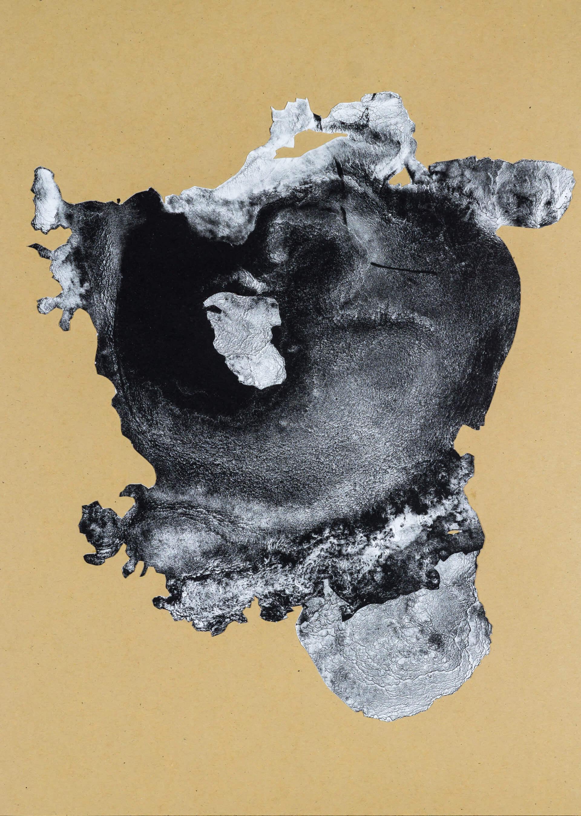 organism (cr) X, 2018, Lithographiecollage auf Papier, Unikat, 41,5x30cm
