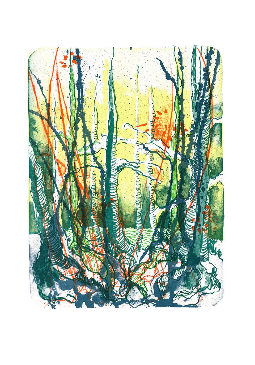 Katharina Albers hat die Natur im Fokus, Portrait, Artikel von Marie-Chantal Tajdel