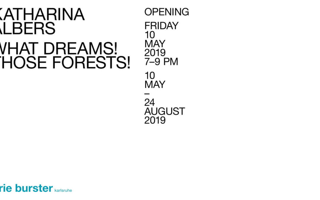 Katharina Albers // what dreams! those forests!